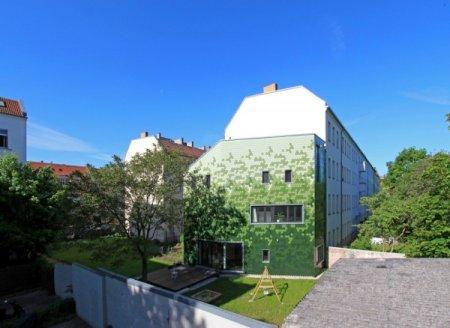 Экологичные немецкие окна