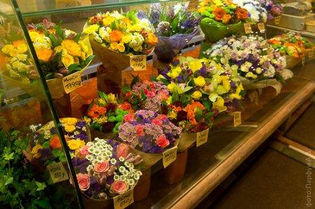 Как отремонтировать холодильник для цветов