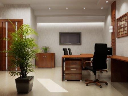 Оформление директорского кабинета