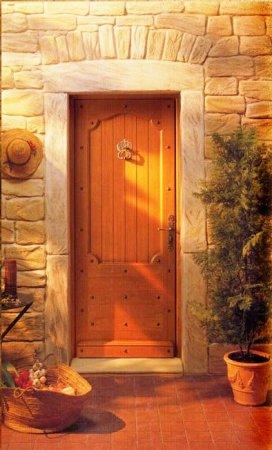 Выбираем входную дверь ПВХ